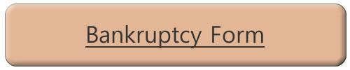 Online Bankruptcy Application